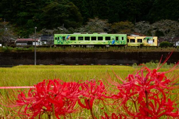 北河内駅の「こもれび号」と「きらめき号」