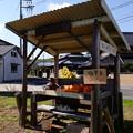 Photos: 店番の居る「無人販売所」