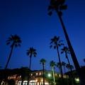 Photos: 月夜のリゾートホテル