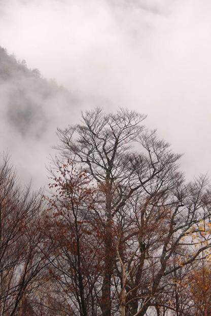 雲の中でやっと見えた景色