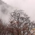 Photos: 雲の中でやっと見えた景色