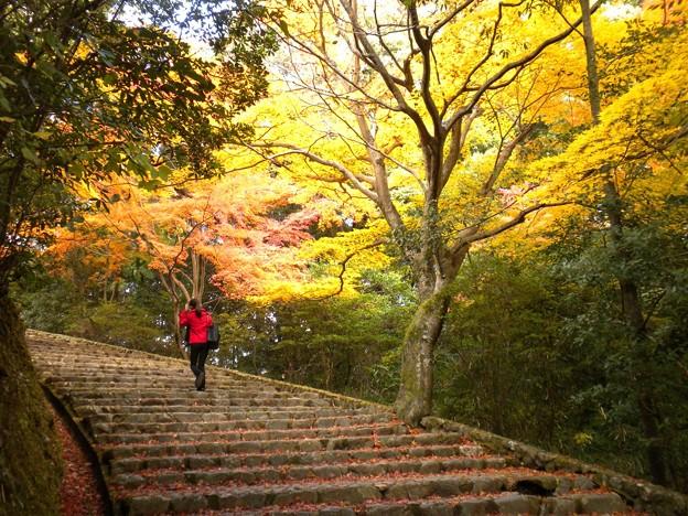 階段(嵐山)