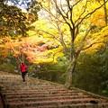Photos: 階段(嵐山)