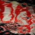 Photos: 水面に映る看板