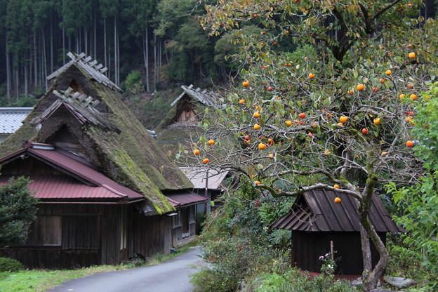 美山村(2)
