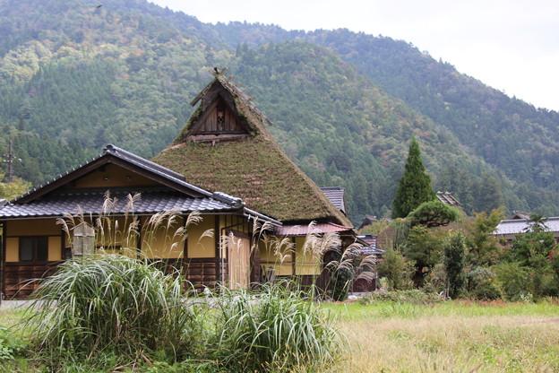 美山村(3)