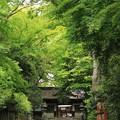 伊居太(いけだ)神社