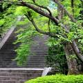 Photos: 京都 知恩院