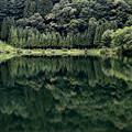 中綱湖(白馬)