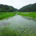 Photos: 中綱湖 南端