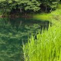 Photos: 中綱湖