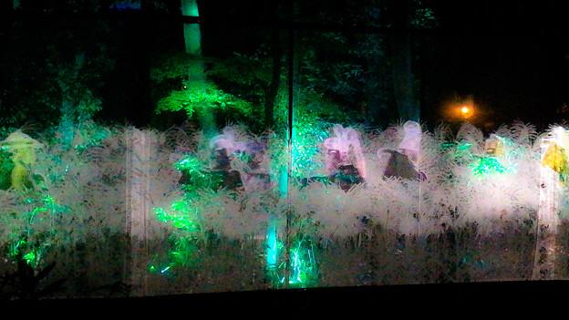 下鴨神社 光の森