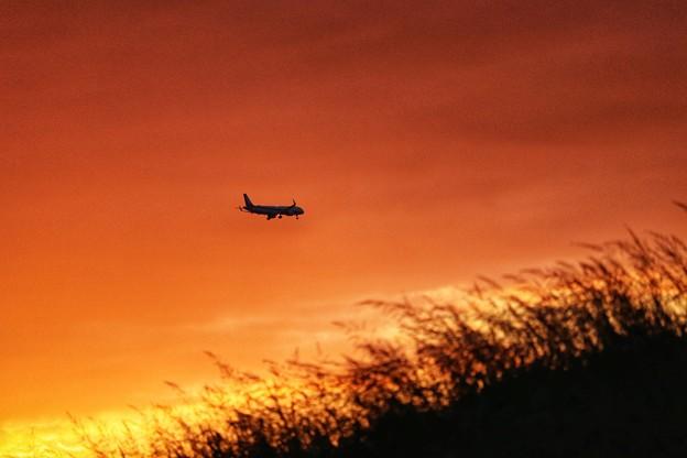 まもなく伊丹空港