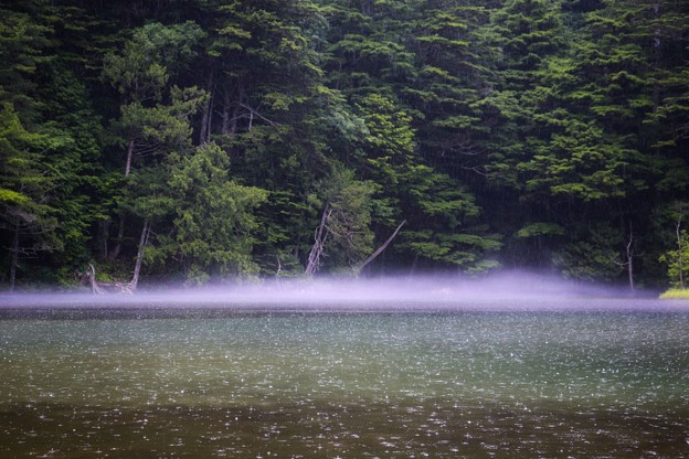 Photos: 靄立つ