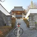写真: DSC_7428 妙香寺