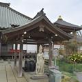 Photos: DSC_7448 祥泉寺・・・3