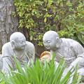 Photos: DSC_7451 祥泉寺・・・5
