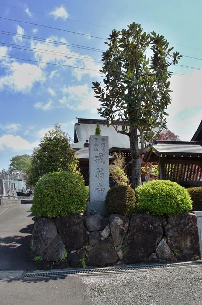 Photos: DSC_7636 戒翁寺...2