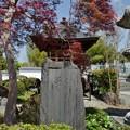 Photos: DSC_7647 戒翁寺...4