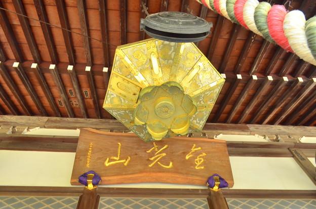 CSC_7948 観泉寺...4