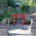 DSC_8038 白山神社..