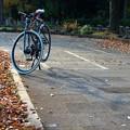 Photos: DSC_9352 16-9 Color 落ち葉と影と...。