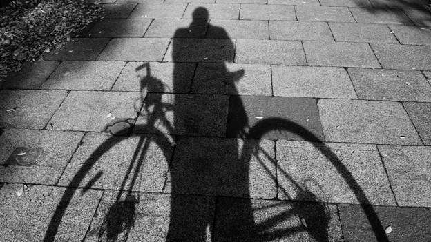 Photos: DSC_9380 16-9 自転車と僕のシルエット...。