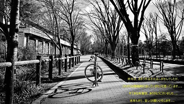 DSC_9630_00001_edited 16-9 年賀