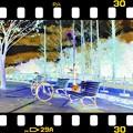 Photos: 85 Color ネガ