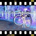 Photos: 218 Color ネガ