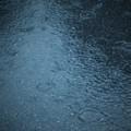 Photos: DSC01694 雨