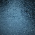Photos: DSC01691 雨