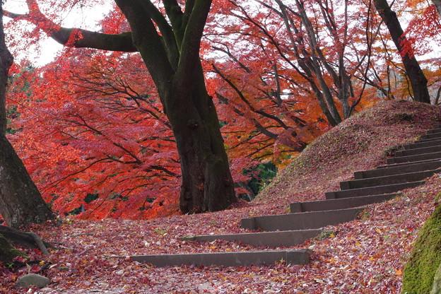 Photos: 階段の先には…
