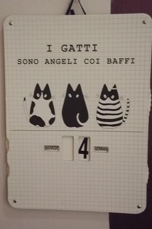 サンマリノ・猫ショップ0128
