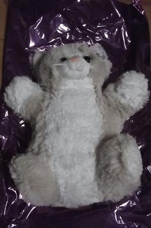 サンマリノ・猫ショップ0129