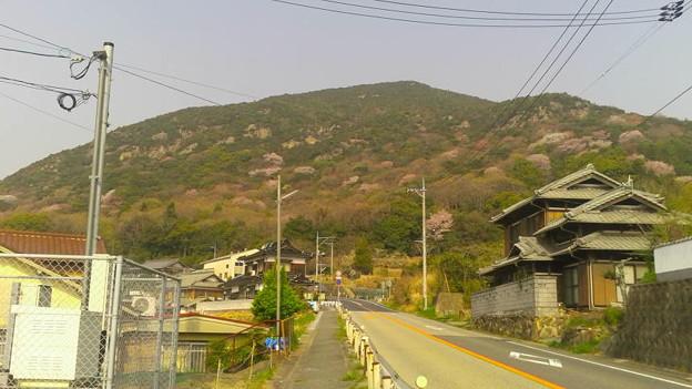 兵庫県赤穂市、法光寺近くから