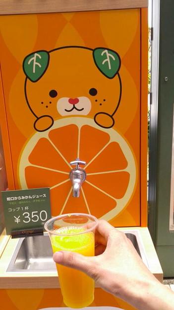 松山空港の蛇口からみかんジュース350円