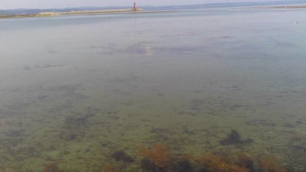 見附島の海