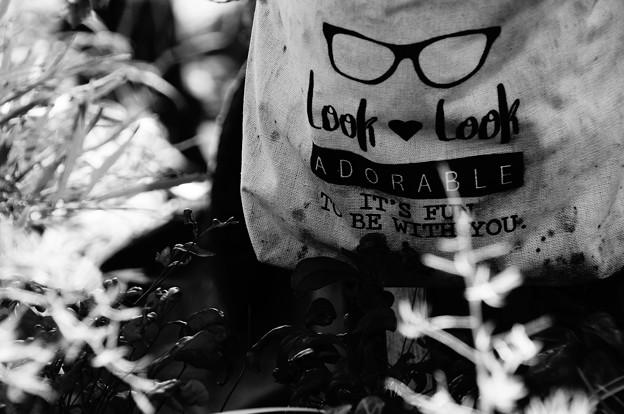写真: 眼鏡男