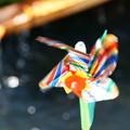 写真: 水辺の風車