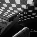 写真: 織りなす光