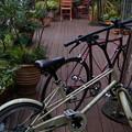 Photos: 自転車と赤い椅子と