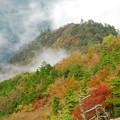 4◆霧と紅葉
