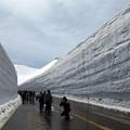 雪の大谷(2)