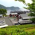 新緑の舟屋の里公園(2)