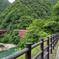 写真: 黒部峡谷(3)