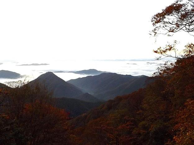 大江山・雲海と紅葉