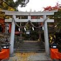 写真: 有子山稲荷神社(1)