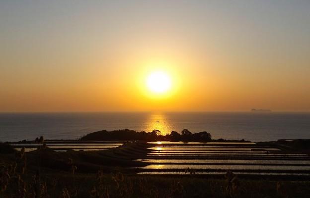 夜明けの棚田(5)