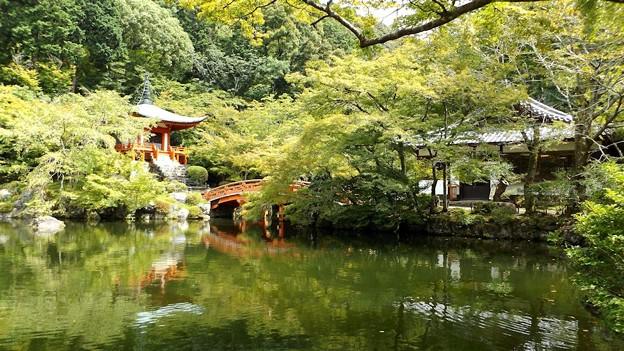 池の水面に映る弁天堂